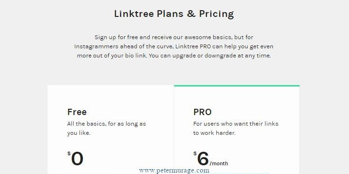 Linktree Alternatives - Peter Murage